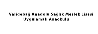 Validebağ Anadolu Sağlık